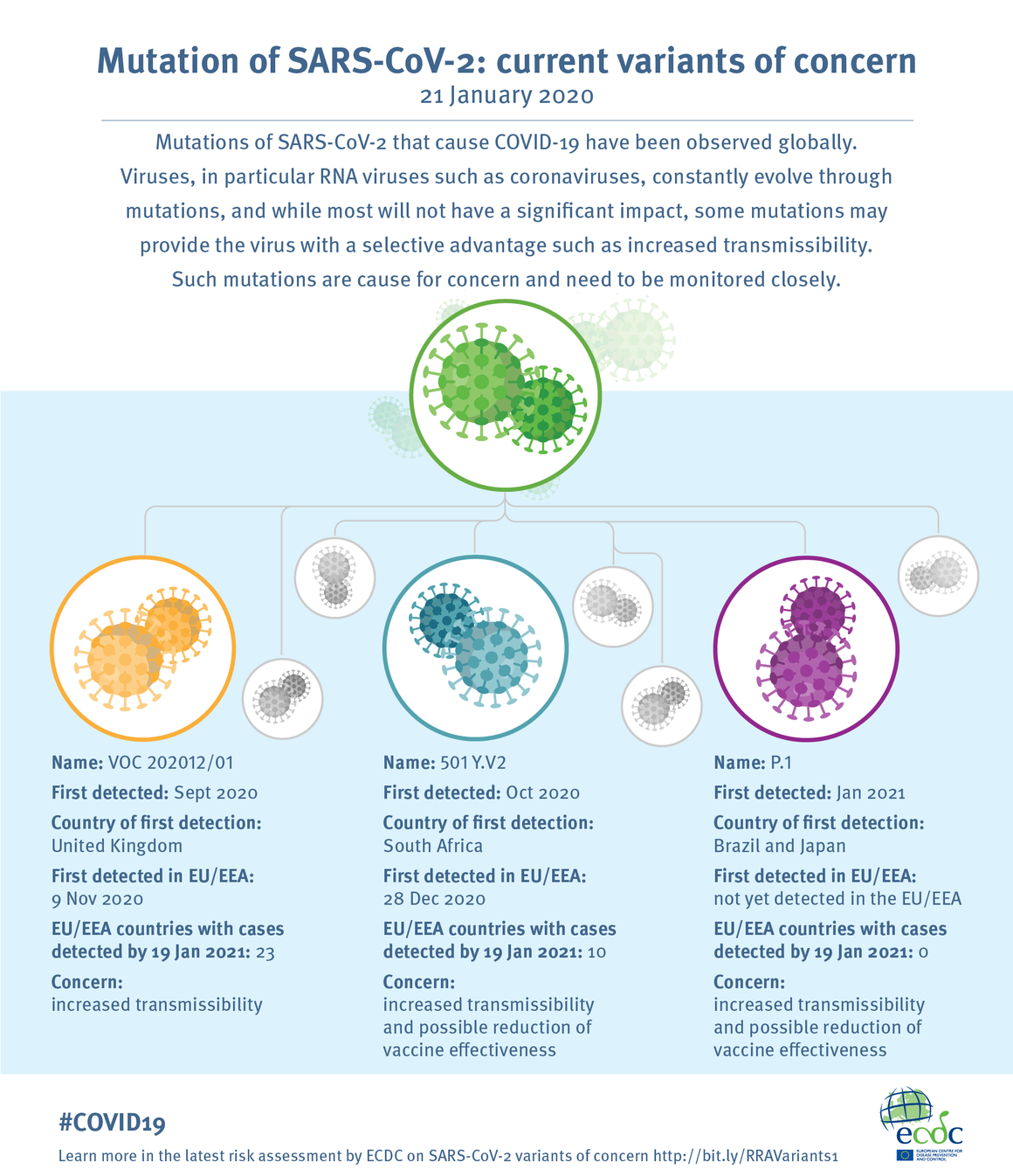Infographic-RRA-variants_1.png